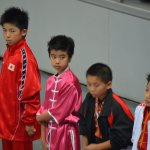 4th world junior wushu 8