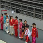 4th world junior wushu 9